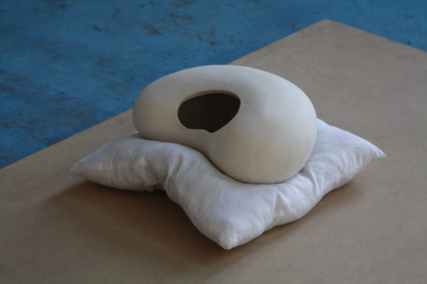haricot-coussin